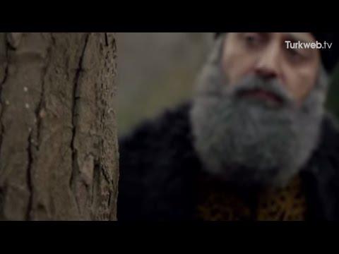 Karıncalar ve Kanuni Sultan Süleyman (Süleyman'dan hakkın alır karınca)