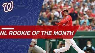 Juan Soto named NL Rookie of the Month