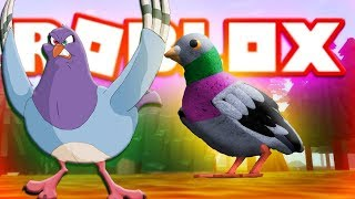 GREAT GAME BIRD SIMULATOR/Roblox Feather Family/Roblox Turkish
