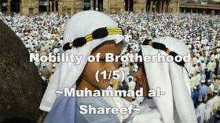 Nobility of Brotherhood (1/5)