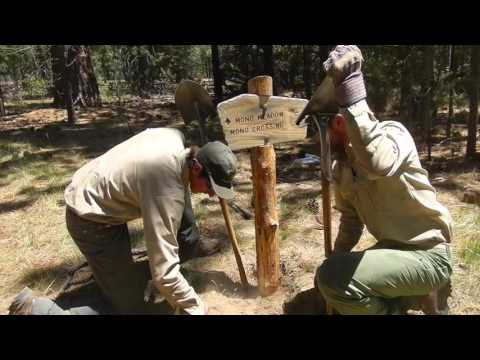Sierra Wilderness Intern