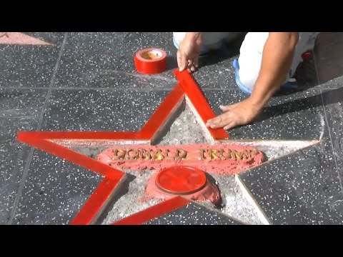Trump's Hollywood Walk of Fame star destroyed