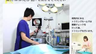 日本大学生物資源科学部卒業生紹介2015 獣医学科