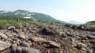 大雪山歩きⅩ 高根ケ原
