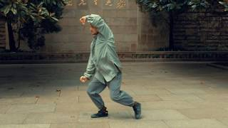 Shuai Lu: Rare Kung Fu Form from Shui Kou Men Style/Taiji Mantis