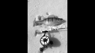 Pineview 14 Lure Challenge Ice Fishing Perch Crappie