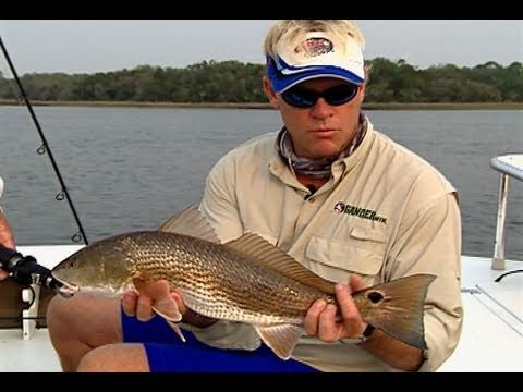 Jacksonville Florida Fishing Topwater Redfish Flounder And Trout
