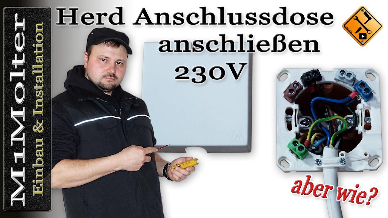 Herdanschlussdose 230 Volt anschließen (3 Kabel/Adern) von ...