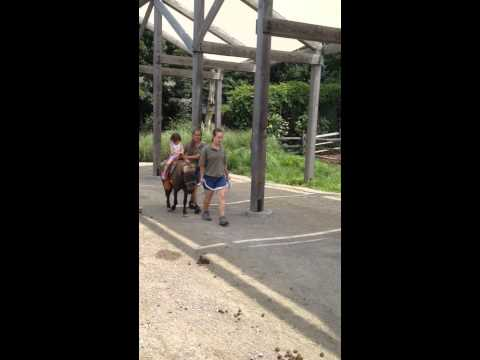 7.26.14 Samantha pony ride at Turtleback Zoo