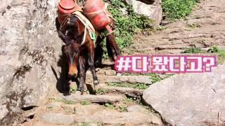 [여행일상-World Traveler] 네팔(Nepal) 히말라야(Himalaya), 여행영상, 세계 여행을 떠나요, 세계테마기행, 세계여행 동영상