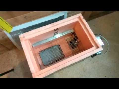 Как сделать инкубатор своими руками в домашних условиях видео для кур