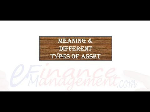 Meaning and Different Types of Asset