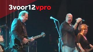 The Scene - Blauw live op Pinkpop 2014