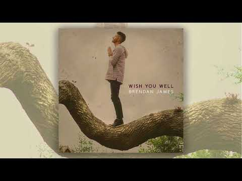 Brendan James - Wish You Well (official audio)