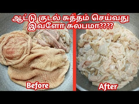Kudal sutham seivathu yepadi?/ How to clean goat intestines in tamil