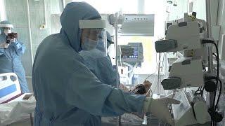 В России за сутки выявили 8 406 новых случаев коронавируса