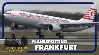Planespotting Frankfurt Airport | April 2016 | Teil 2