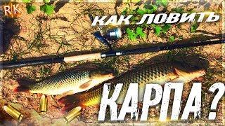 Russian Fishing 4 Как ловить Карпа?