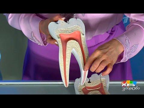 Жить здорово! Можноли поставить наместо выбитый зуб? (15.06.2017)