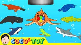 한국어ㅣ우리집 세면대 밑에 고래가 산다 5, 어린이 동물 만화, 고래의 모험ㅣ꼬꼬스토이