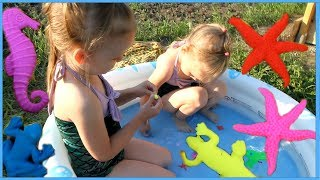 Игрушки животные растущие в воде Выращиваем играем и купаемся в бассейне Бассейн с ORBEEZ