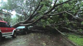 Cyclone Carlos Breaks Rainfall Records And Slams Darwin, Australia 16th Feb 2011 Raw Footage