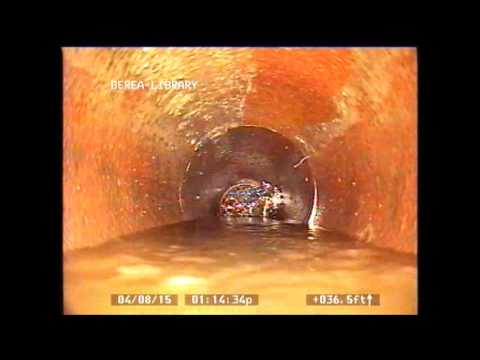 How To Cut Amp Remove Tree Roots From Your Sewer Pipes Doovi