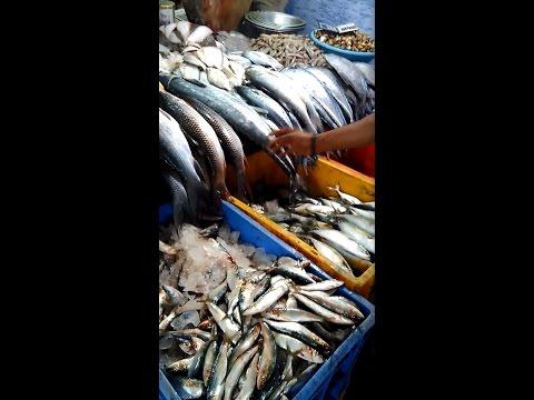 Bangalore Yashwanthpur Fish Market View   Machali Market ...