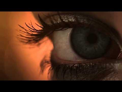 Massive Attack   Paradise Circus Zeds Dead Dubstep Remix
