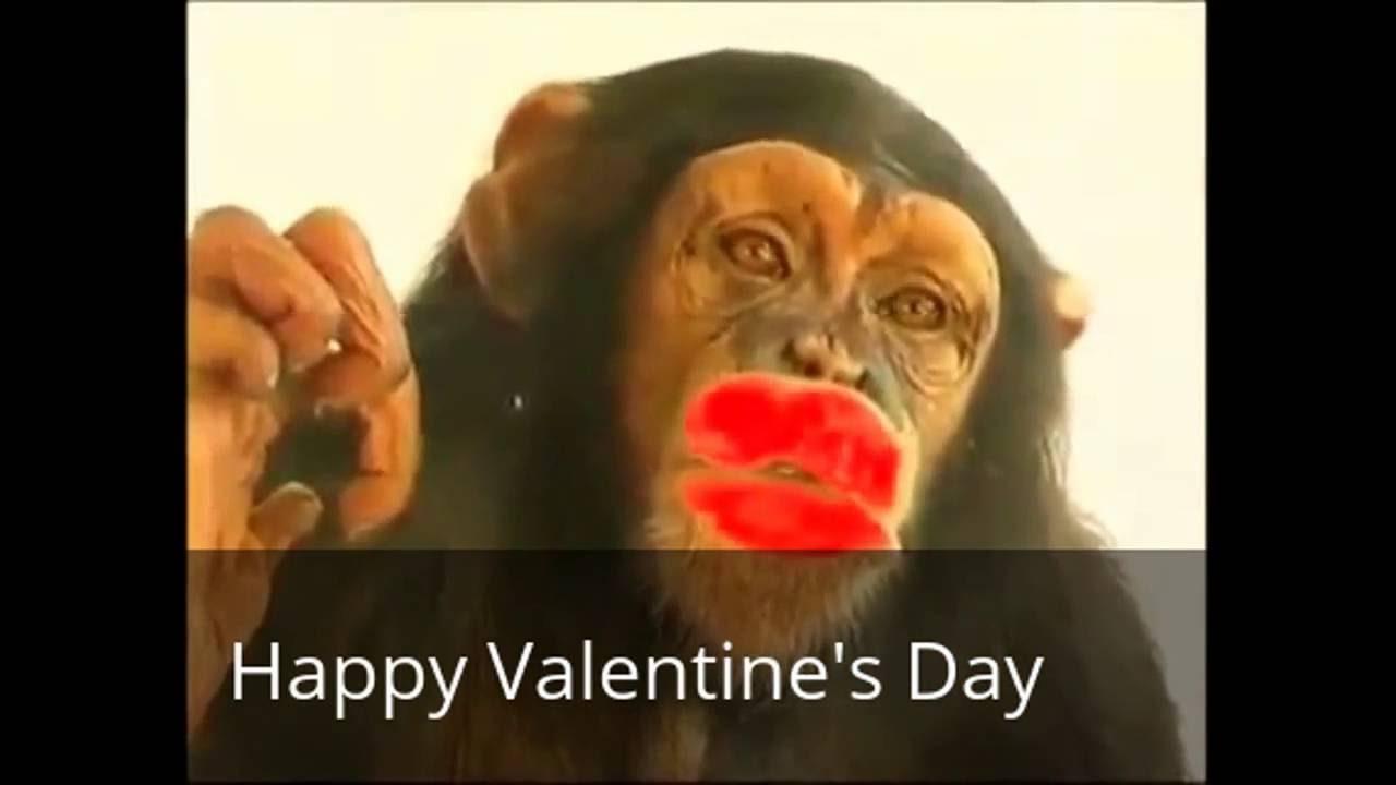 92 Gambar Lucu Gokil Valentine Day Terlihat Keren