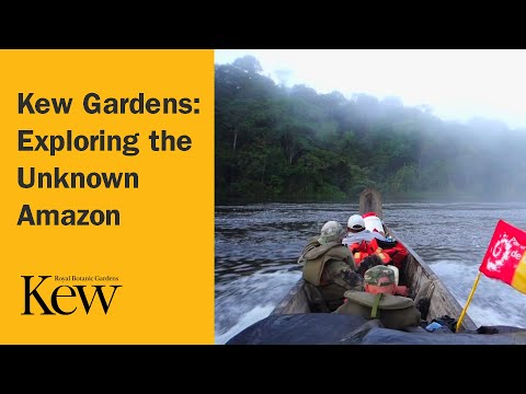Kew Gardens: Exploring the Unknown Amazon