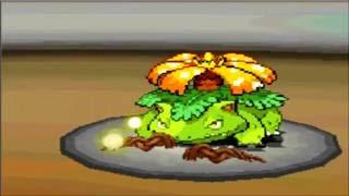 Batalla pokemon B&W #17 ALEXBLK VS Shane Batalla por el reino planta