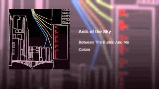 Ants of the Sky