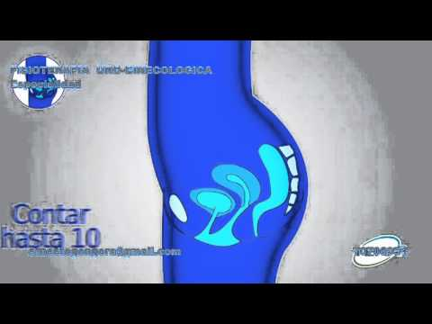 Ejercicios de  kegel - fortalecimiento del suelo pelvico
