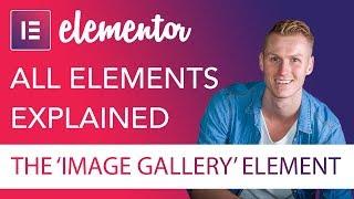 Image Gallery Element Tutorial   Elementor