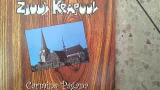 Zjuul Krapuul - Samson