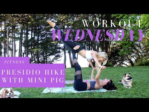 Workout Wednesday - Hiking The Presidio Trail In SF  - Mini Pig + Dog + Rachel