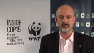 WWFs Lasse Gustavsson om klimatmötet i Köpenhamn