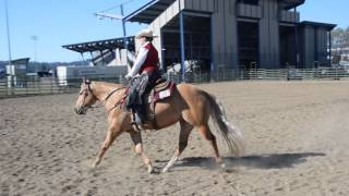 aqha ranch riding amateur pattern 3