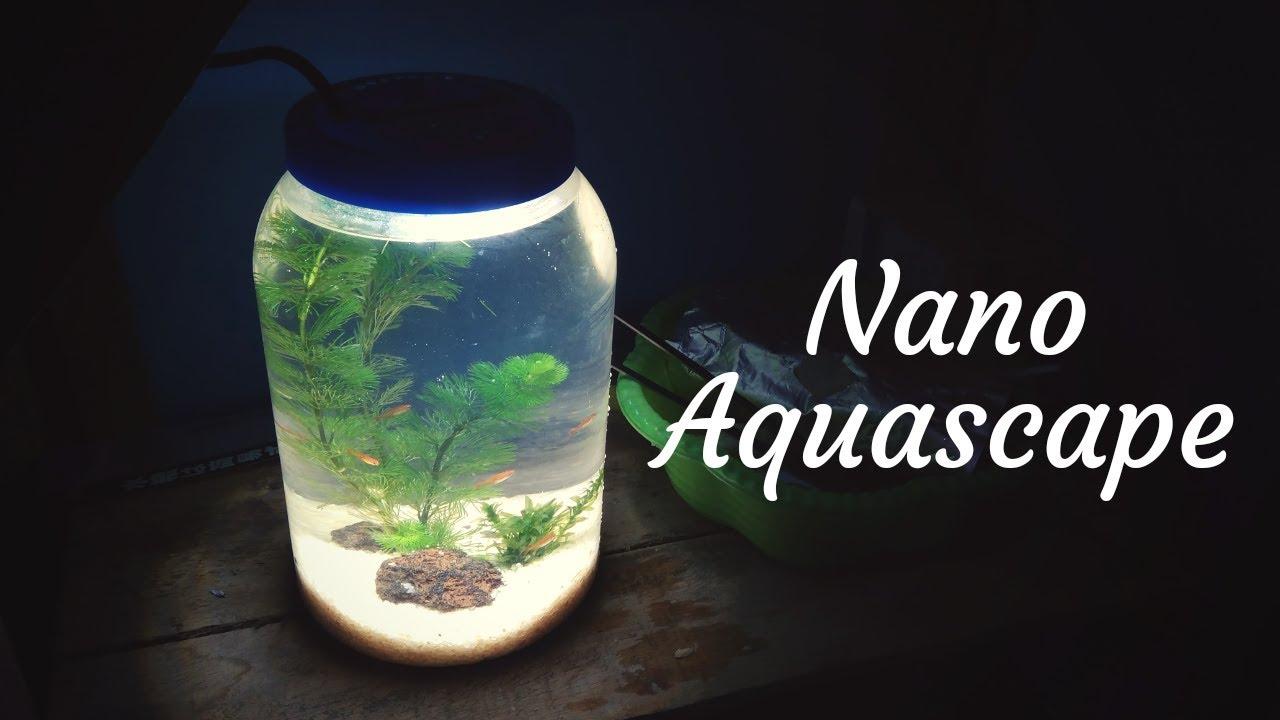 Membuat Nano Aquascape Tank Mudah dan Murah Meriah // 8 ...