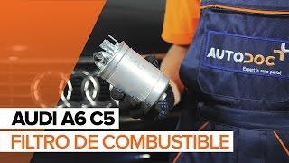 Manual de taller Audi A6 C6 Allroad descargar