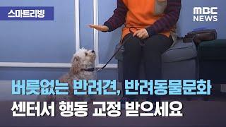 [스마트 리빙] 버릇없는 반려견, 반려동물문화센터서 행…