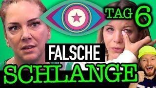 """""""Ich mach dich fertig!"""" Ina ÄTZT gegen Danni Büchner! Promi Big Brother 2021 Folge 6"""