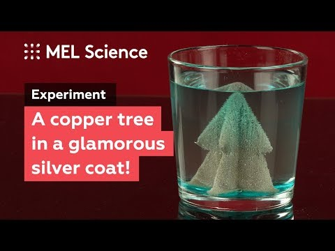 """How to make a glamorous silver tree from copper and salt (""""Silver tree"""" experiment)"""