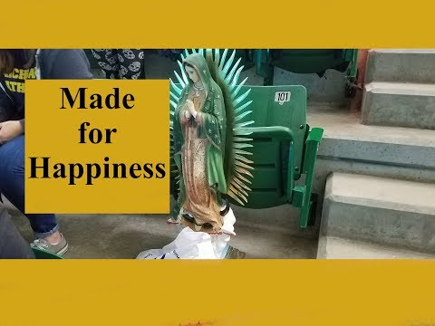 Vlog Post: Made for Happiness