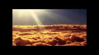 Mushrooms (Salt City Orchestra Remix) - Marshall Jefferson vs Noosa Heads
