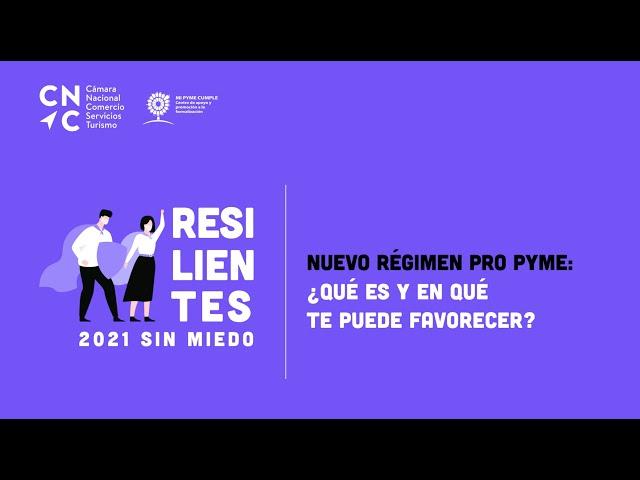 Resilientes:  Nuevo Régimen Pro PYME ¿Qué es y en que te puede favorecer?