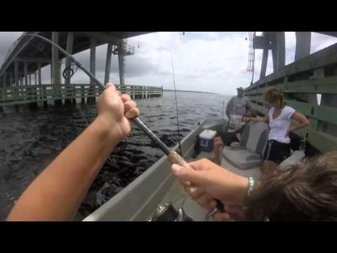 GoPro - Alligator Point Charter Fishing