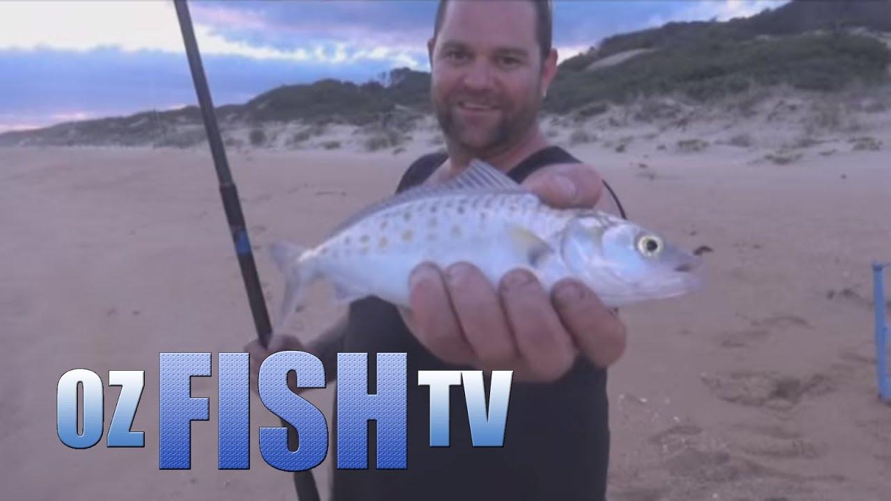 Download Oz Fish TV Season 3 Episode 4 - Lochsport