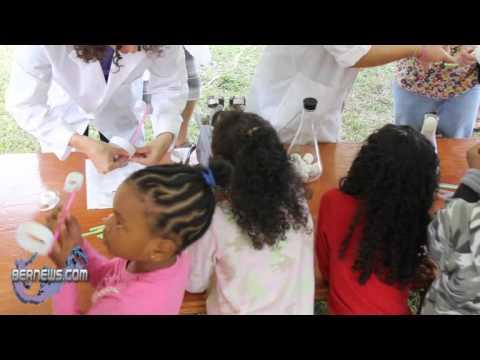 BIOS Marine Science Day: Straw Plane